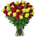 Valentine Flowers to Goa