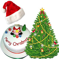 Christmas Cakes to Goa