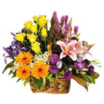 Send Flowers to Goa, Valentine Flowers to Goa