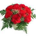Flowers to Goa : Valentines Day Flowers to Goa
